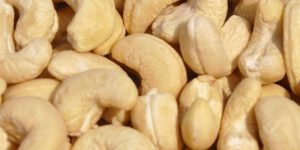 Buy Cashew Nuts in Bulk
