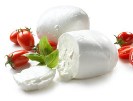 Buy Morzarella Cheese in Bulk