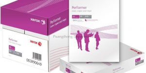 Buy Xerox Copy Paper in Bulk